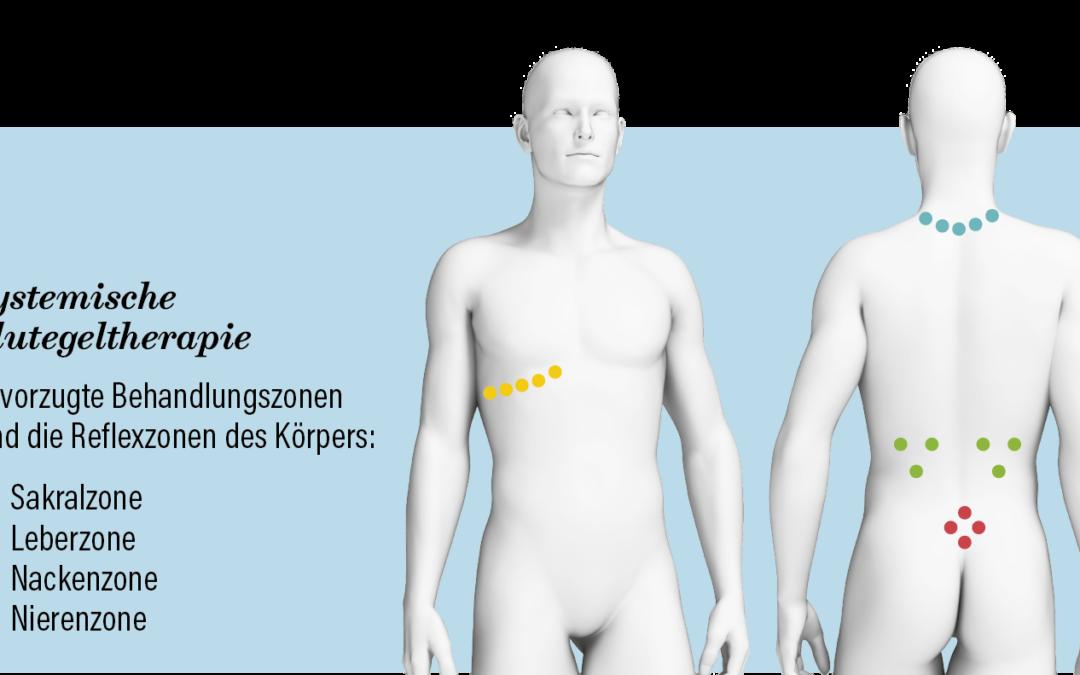 Grafik Reflexzonen_Ansatz_Blutegel Kopie