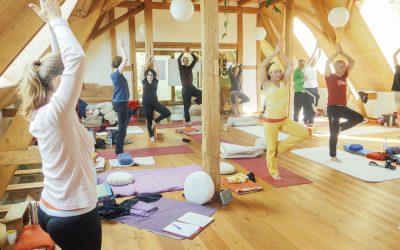 Seit Jahrtausenden erprobt: Hatha Yoga